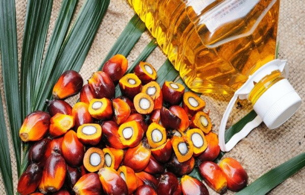 A 5% SAFEGUARD DUTY INCREASE ON REFINED PALM OIL FROM MALAYSIA