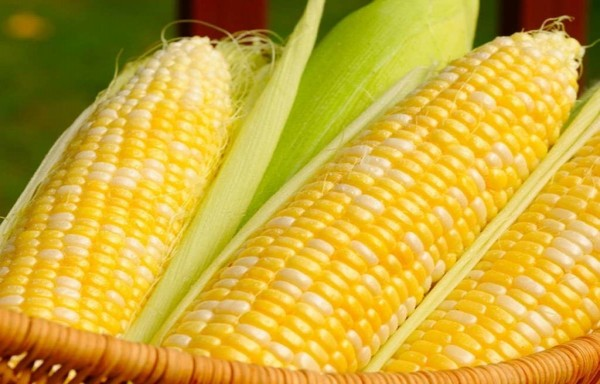 CORN RULING FIRM RECORD NON-FOOD USED DEMAND BY CHINA