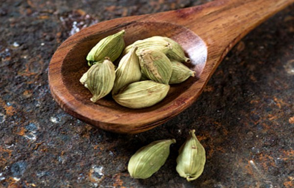 CARDAMOM: CHANGE IN MARKET SENTIMENTS