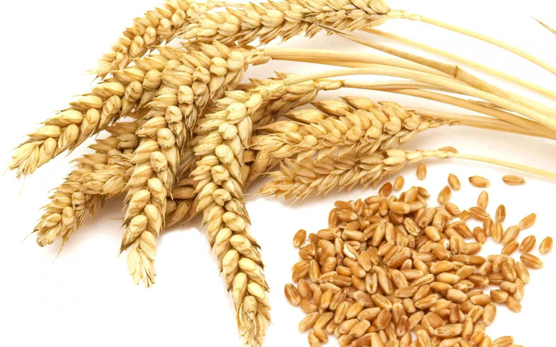 wheat prices doesn't get below $4 on the futures in 2018