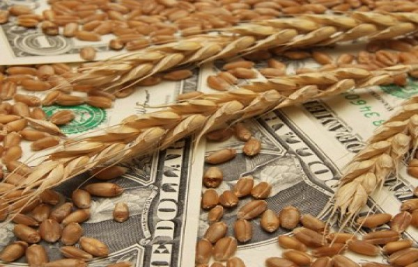 WHEAT WAS HIGHER AT $7.13 HIGHEST SINCE MARCH 2013