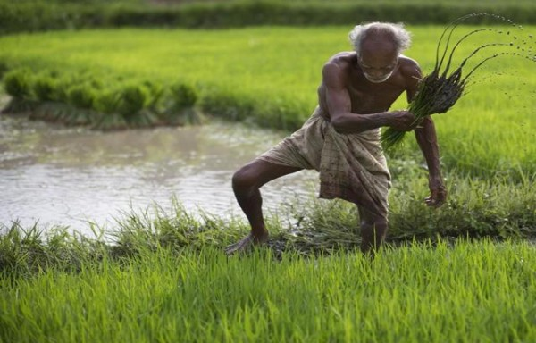 FEWER PEOPLE WANT TO FARM THAT WILL DRIVE PRICES OF AGRI COMMODITIES HIGHER