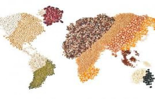 AGRI COMMODITIES ARE EMERGING FROM AN ERA OF INTENSE VOLATILITY