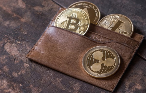 THE LOSSES ACROSS CRYPTOCURRENCY DISADVANTAGE FOR THE INDIAN ECONOMY